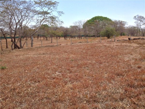 Affordable Lot in Paradise