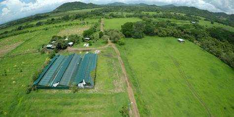 73 hectare farm